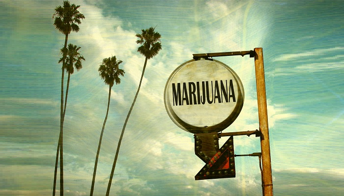 Ask The Experts Should Uncle Sam Take A Toke To Fill His Coffers