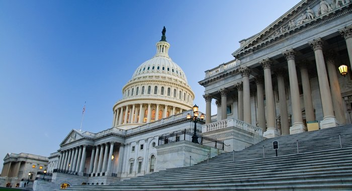 Bill Credit Reports Employment