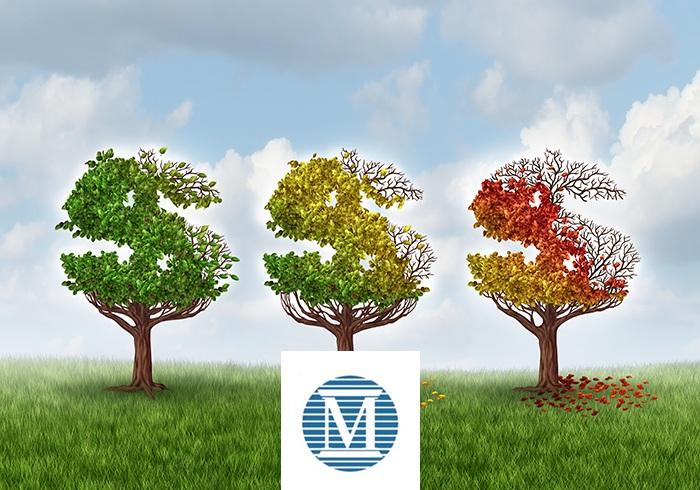 Moodys Bank Downgrade